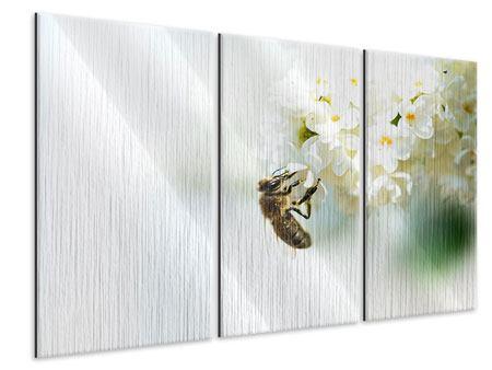Metallic-Bild 3-teilig Die Hummel und die Blüte