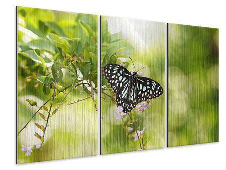Metallic-Bild 3-teilig Papilio Schmetterling XXL