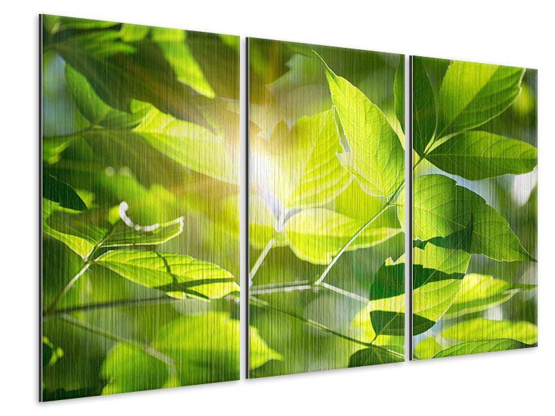 Metallic-Bild 3-teilig Es grünt so grün