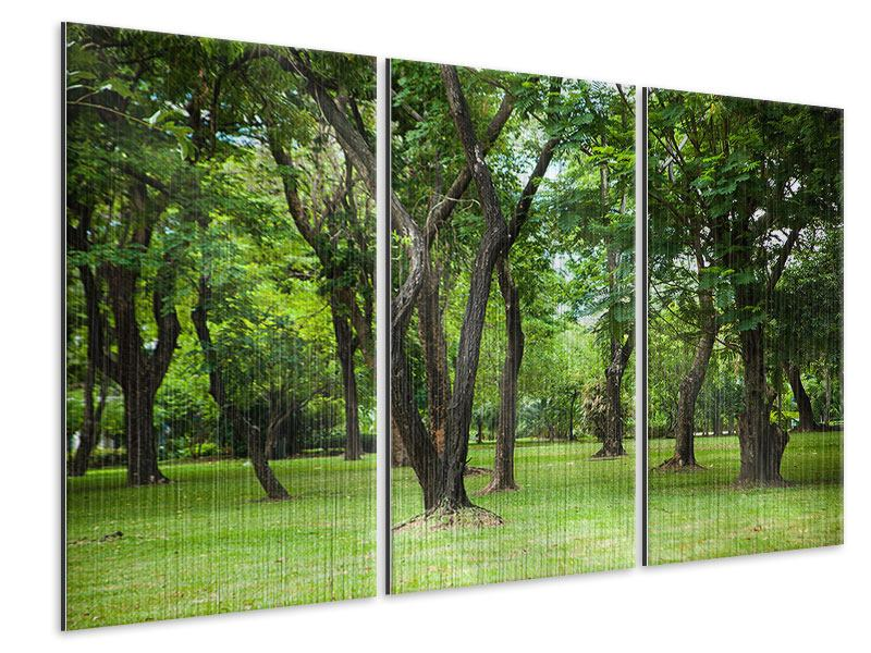 Metallic-Bild 3-teilig Kirschbaum-Garten