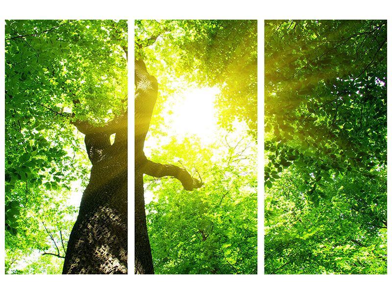 Metallic-Bild 3-teilig Baum