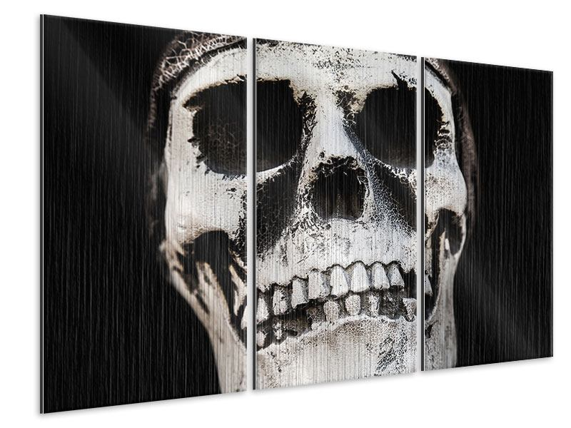 Metallic-Bild 3-teilig Skull