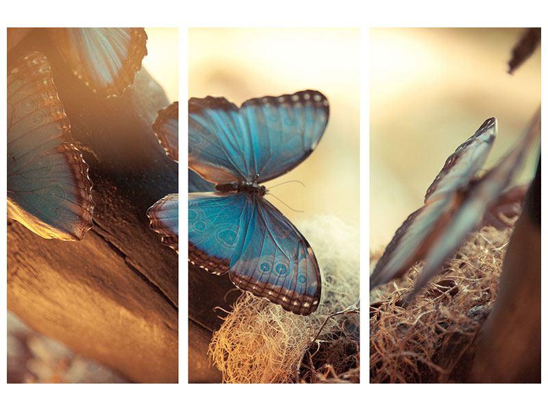 Metallic-Bild 3-teilig Schmetterlinge