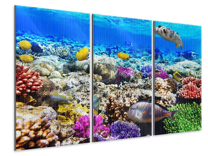 Metallic-Bild 3-teilig Fischaquarium