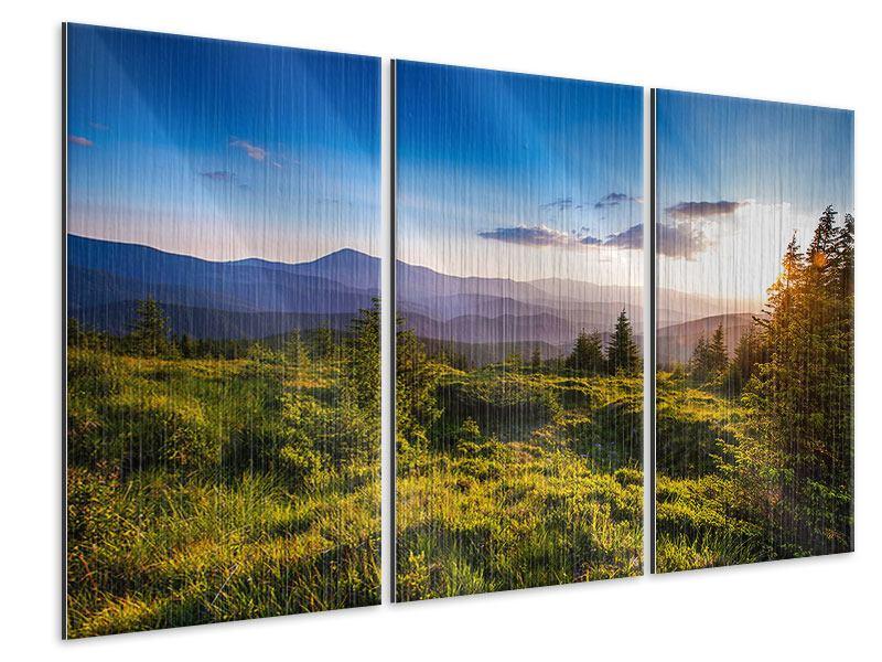 Metallic-Bild 3-teilig Friedliche Landschaft