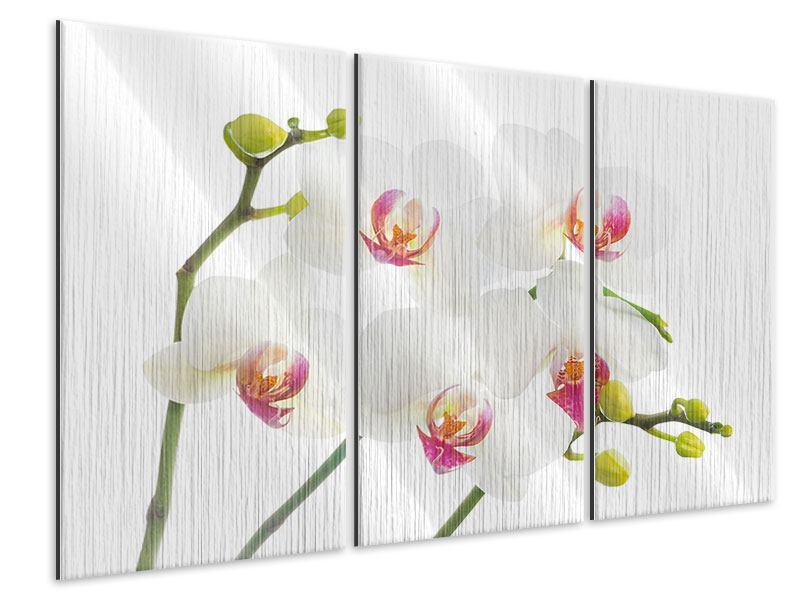 Metallic-Bild 3-teilig Orchideenliebe