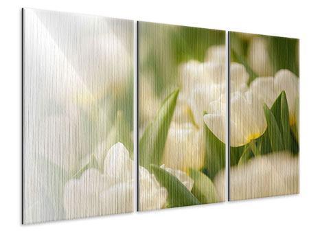Metallic-Bild 3-teilig Tulpenperspektive