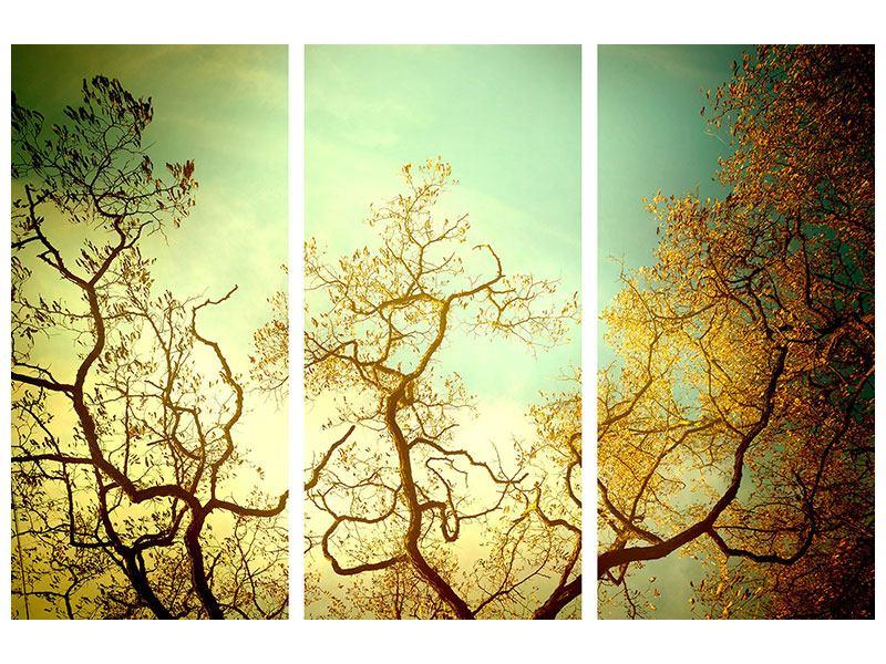 Metallic-Bild 3-teilig Bäume im Herbst