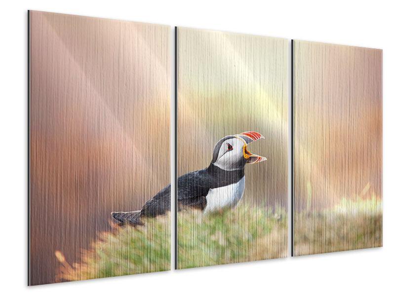 Metallic-Bild 3-teilig Der Papageitaucher