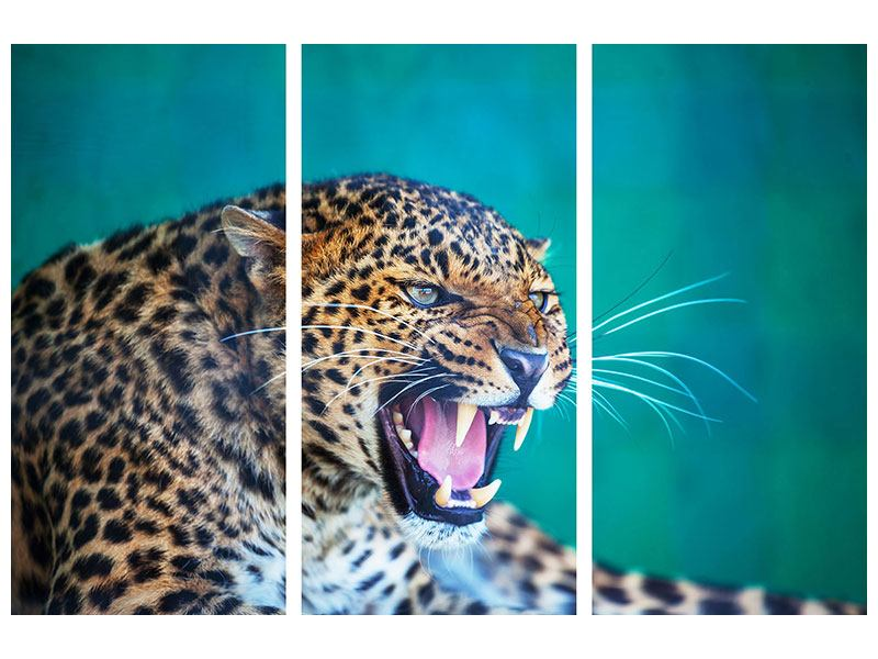 Metallic-Bild 3-teilig Achtung Leopard
