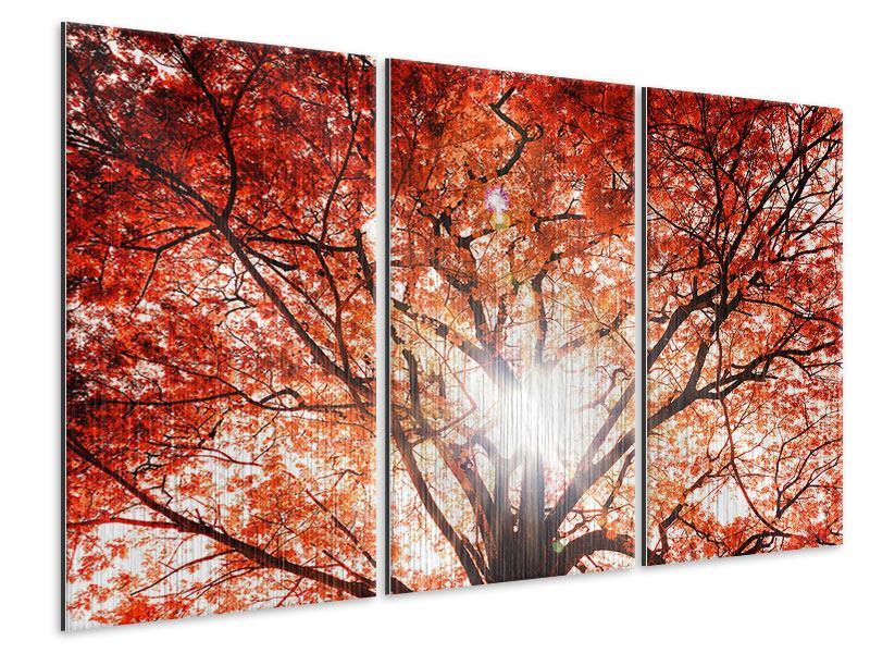 Metallic-Bild 3-teilig Herbstlicht