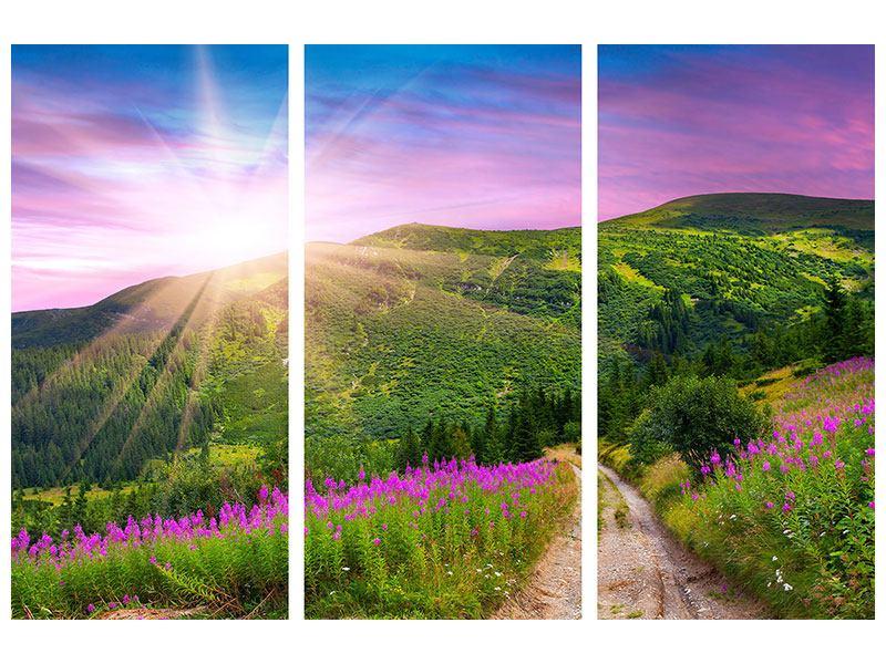 Metallic-Bild 3-teilig Eine Sommerlandschaft bei Sonnenaufgang