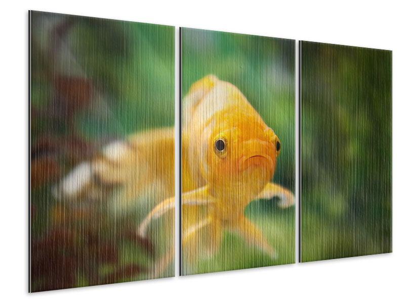 Metallic-Bild 3-teilig Der Fisch
