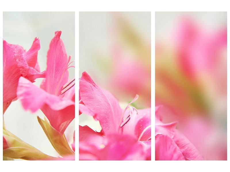 Metallic-Bild 3-teilig Gladiolen
