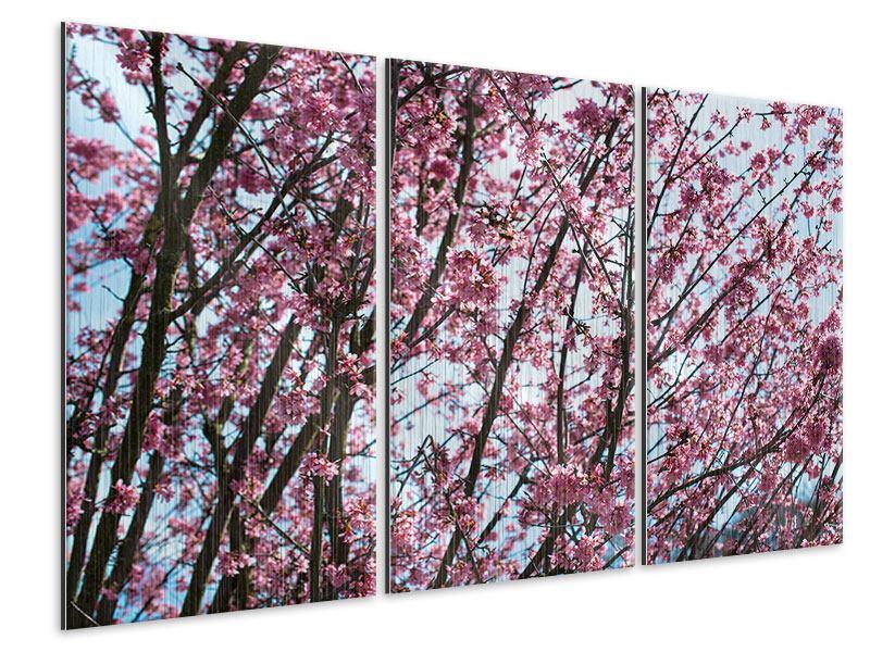 Metallic-Bild 3-teilig Japanische Blütenkirsche