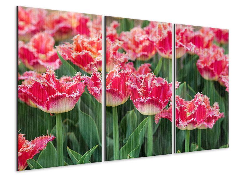 Metallic-Bild 3-teilig Die Tulpenwiese