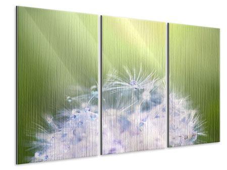Metallic-Bild 3-teilig Pusteblume XL im Morgentau