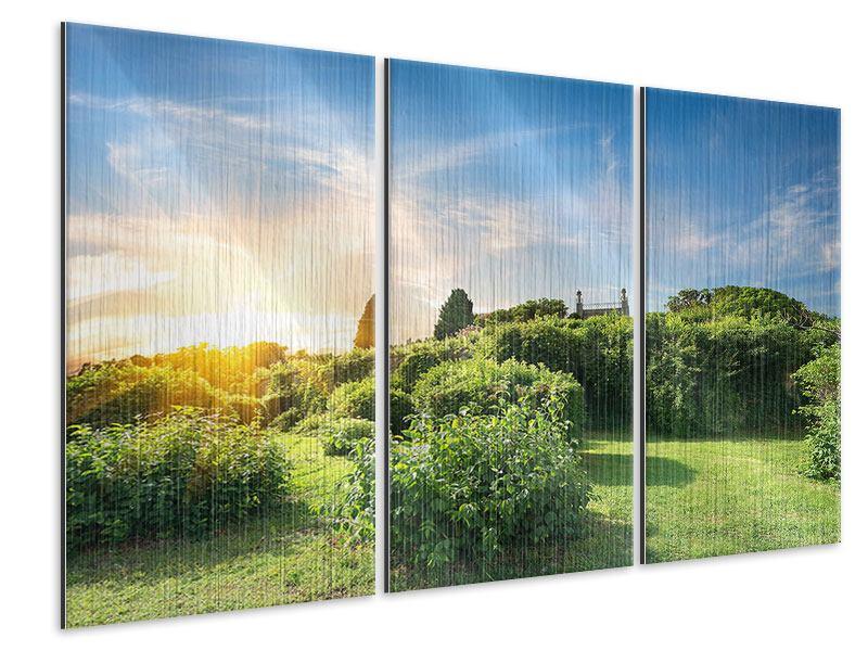 Metallic-Bild 3-teilig Sonnenaufgang im Park