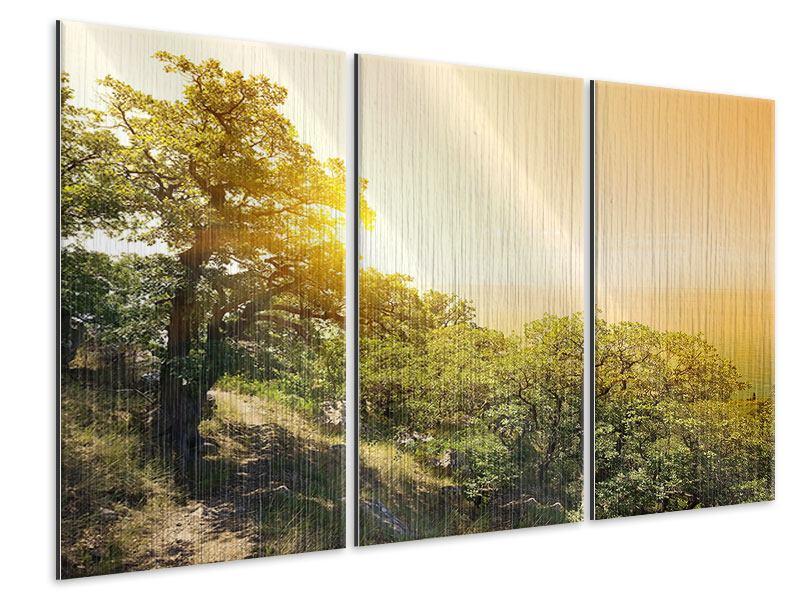 Metallic-Bild 3-teilig Sonnenuntergang in der Natur