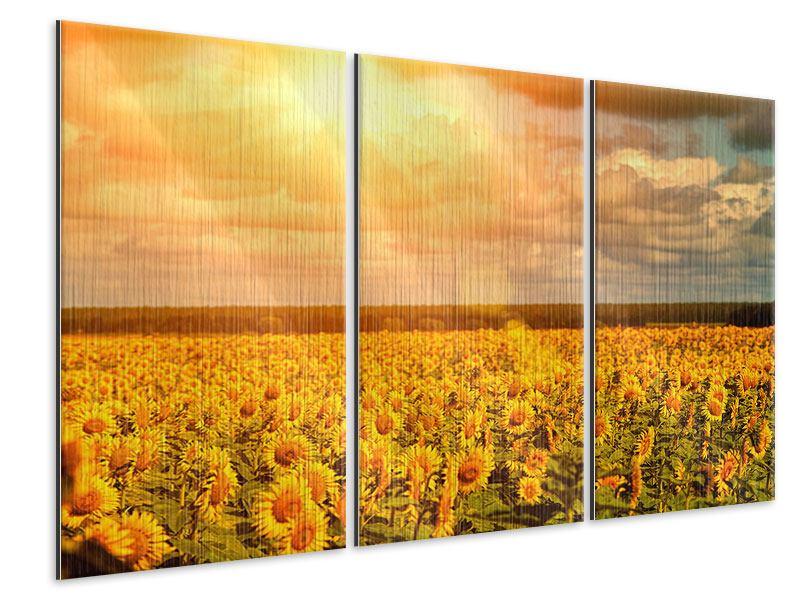 Metallic-Bild 3-teilig Goldenes Licht für Sonnenblumen