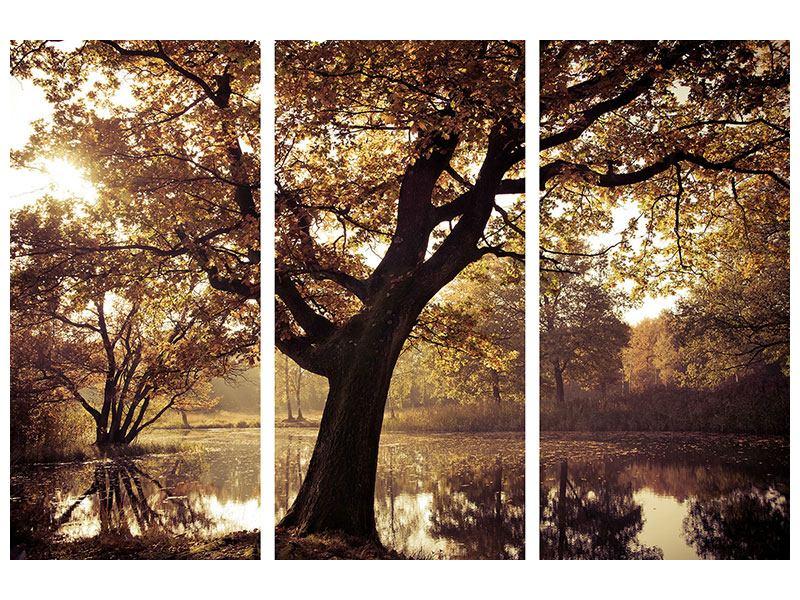 Metallic-Bild 3-teilig Landschaftspark