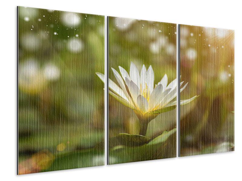 Metallic-Bild 3-teilig Lilien-Lichtspiel