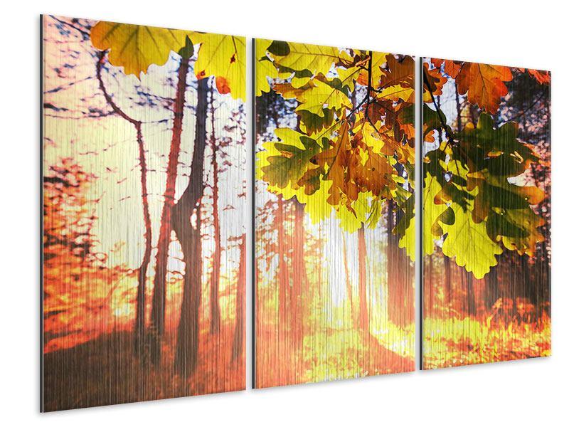 Metallic-Bild 3-teilig Herbst