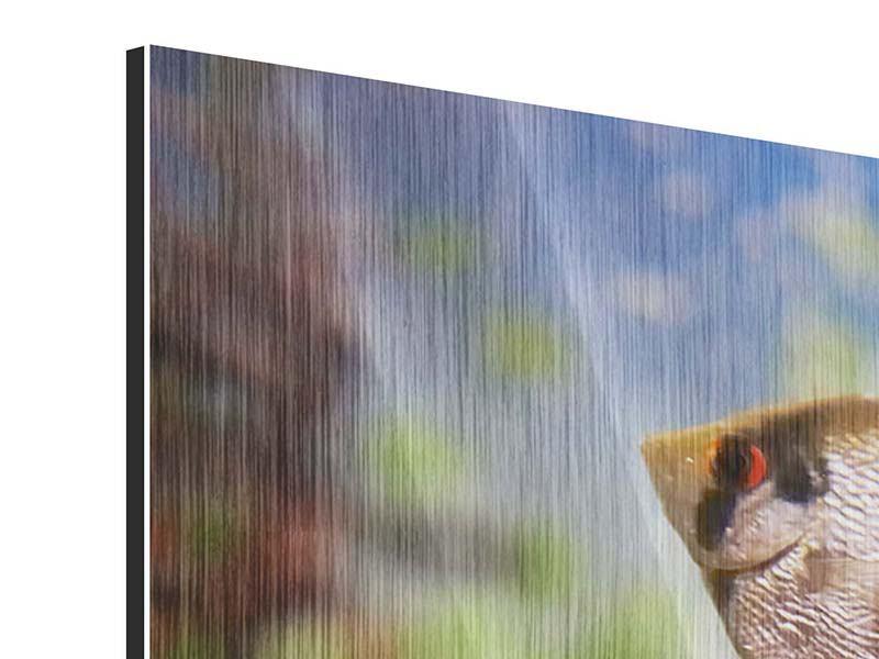 Metallic-Bild 3-teilig Bunte Fische