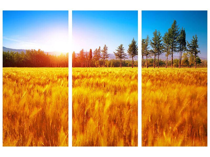 Metallic-Bild 3-teilig Der Herbst