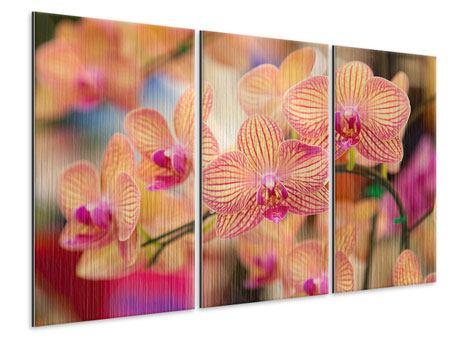 Metallic-Bild 3-teilig Exotische Orchideen