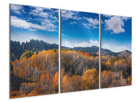 Metallic-Bild 3-teilig Wolken ziehen auf