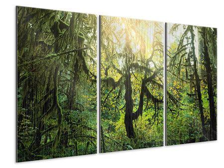 Metallic-Bild 3-teilig Verträumter Wald