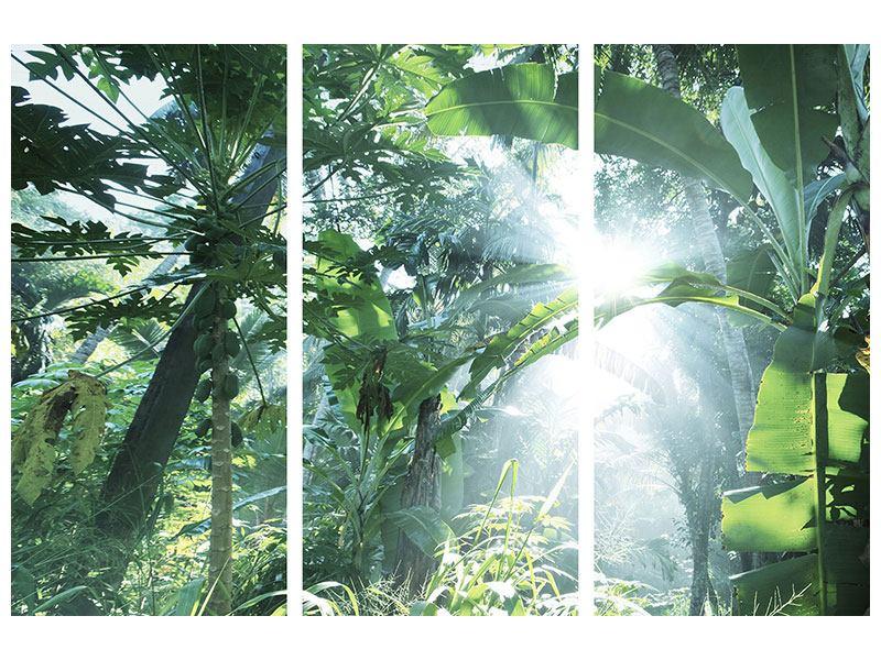 Metallic-Bild 3-teilig Dschungelstar