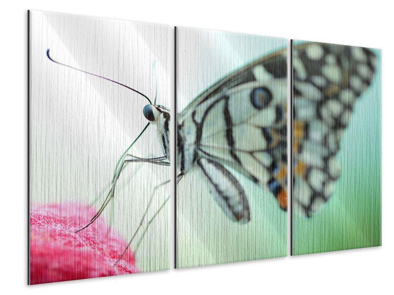 Metallic-Bild 3-teilig Schmetterling XXL