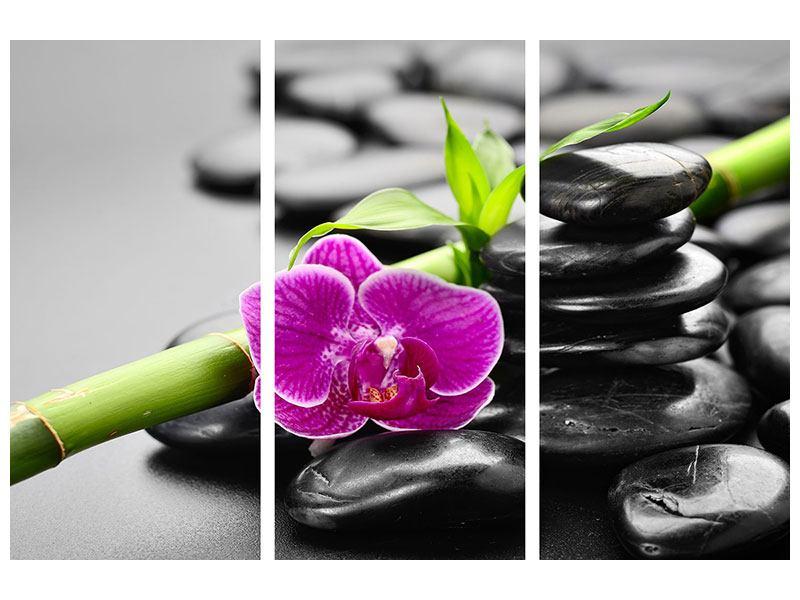Metallic-Bild 3-teilig Feng-Shui-Orchidee