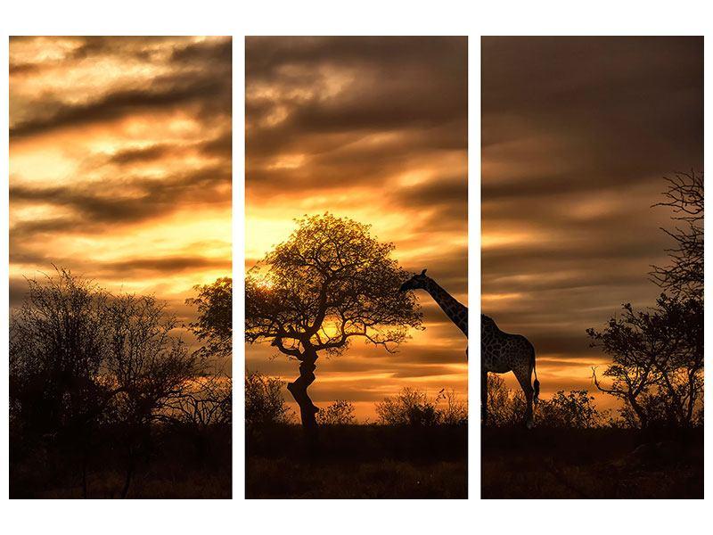 Metallic-Bild 3-teilig African Dreams