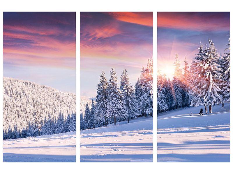 Metallic-Bild 3-teilig Winterlandschaft