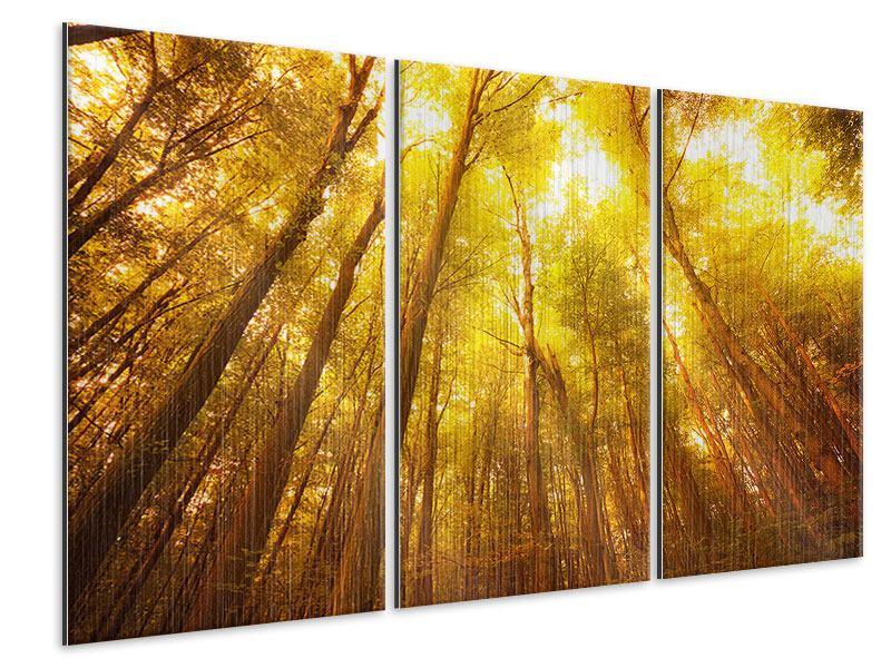 Metallic-Bild 3-teilig Herbstwald