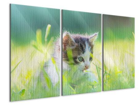 Metallic-Bild 3-teilig Kitten