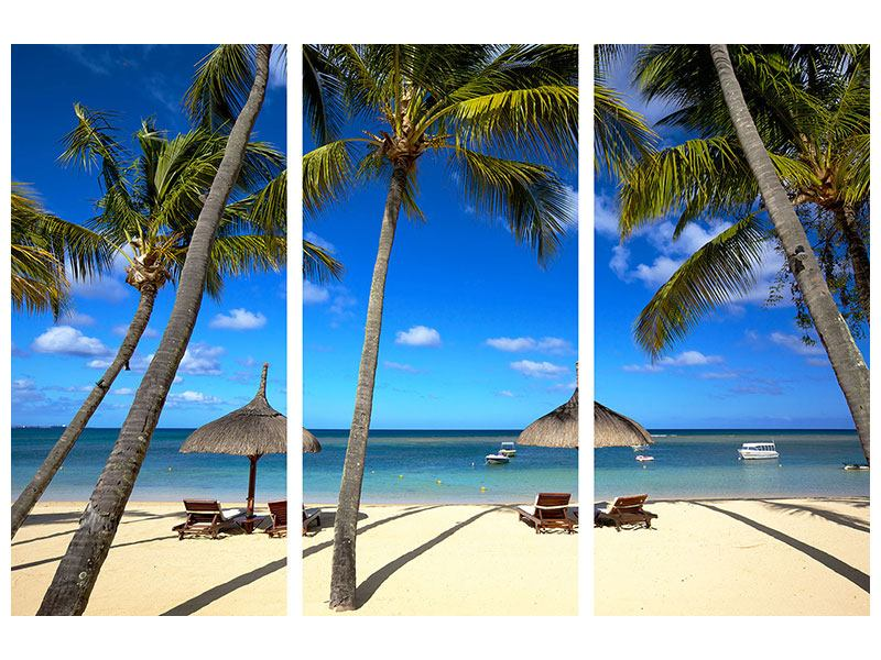 Metallic-Bild 3-teilig Mauritius