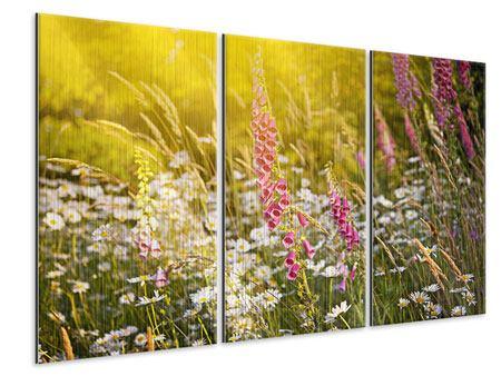 Metallic-Bild 3-teilig Sommerliche Blumenwiese
