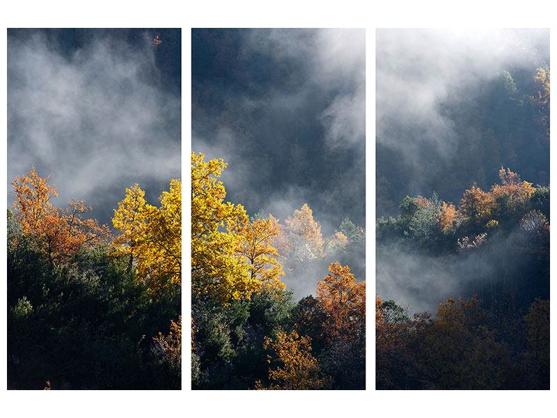 Metallic-Bild 3-teilig Mondscheinwald