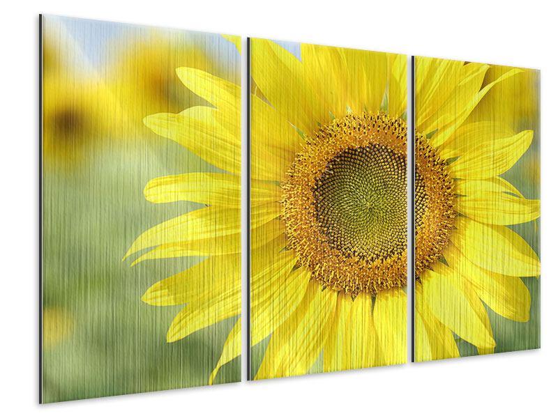 Metallic-Bild 3-teilig Die Blume der Sonne