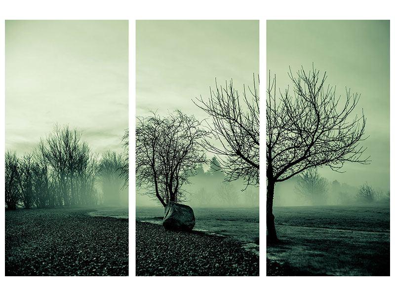 Metallic-Bild 3-teilig Der Auwald im Nebel