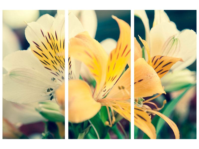 Metallic-Bild 3-teilig Tigerlilien