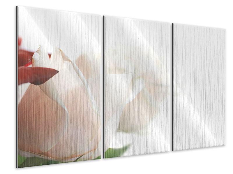 Metallic-Bild 3-teilig Herrliche Rosen