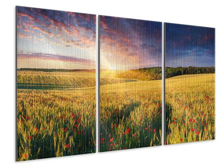 Metallic-Bild 3-teilig Ein Blumenfeld bei Sonnenaufgang