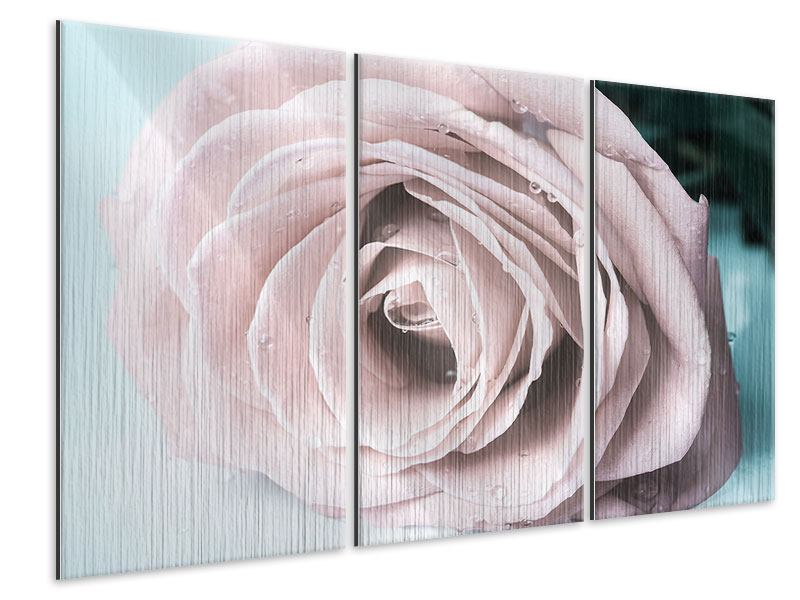 Metallic-Bild 3-teilig Pastellrose