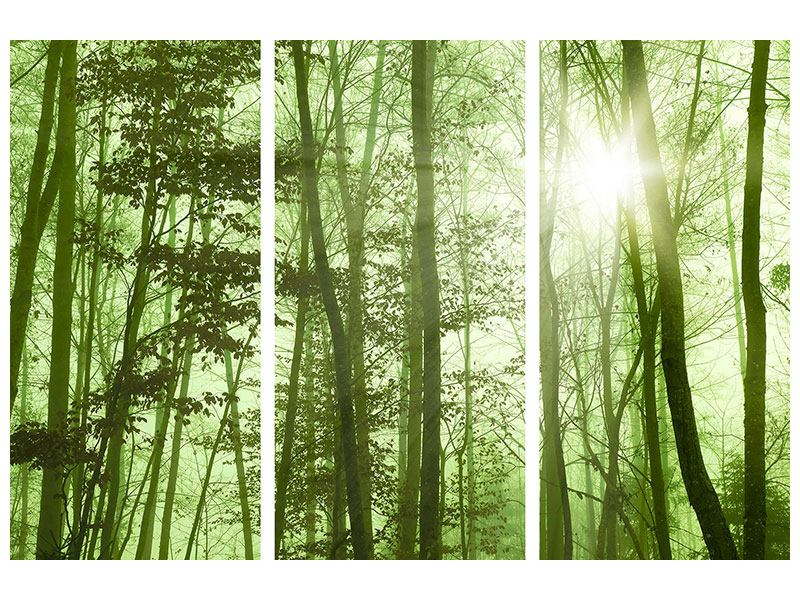Metallic-Bild 3-teilig Nibelungenwald