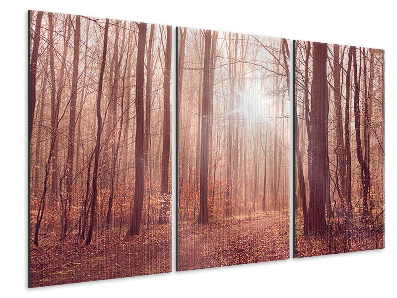 Metallic-Bild 3-teilig Sonnenuntergang im Herbstwald